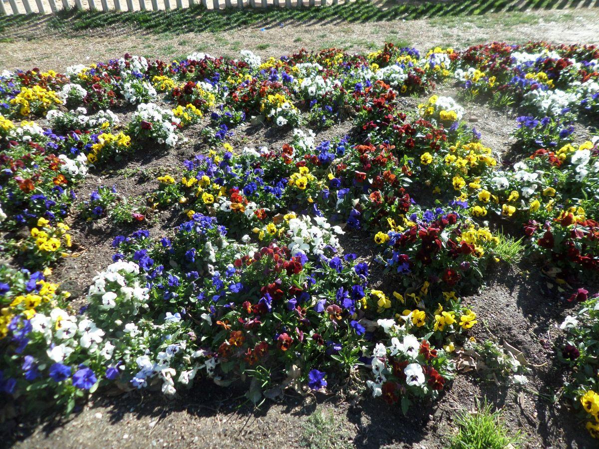 """Grupo de flores (""""Grup de flors""""): Definición y ejemplo."""